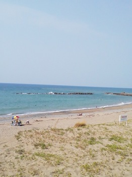 2011.08.16 日本海.