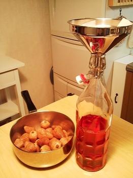 2010.05.10 いちご酒