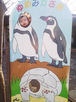 2012.12.16 夢見ヶ先動物公園