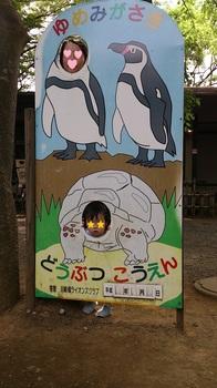 2013.04.29 夢見ヶ先動物公園