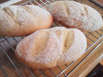 パン教室 ohana_ライ麦パン