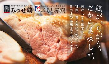 170531_みつせ鶏&ふもと赤鶏_08.jpg