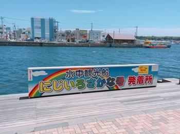 170602_三崎まぐろ_09.JPG